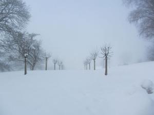 eingangsbild-winter